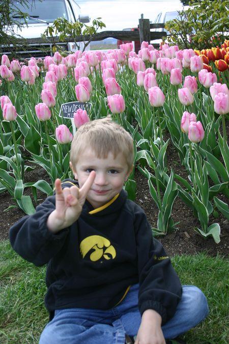April 12 07 tulips 040