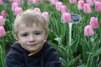 April_12_07_tulips_041