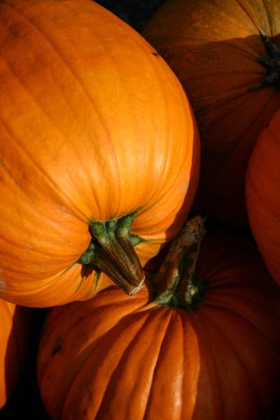 October_20_06_009